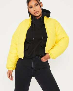 Yellow Cropped Matte Finish Padded Jacket - 8 / YELLOW
