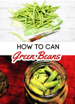 Canning green beans is a great way to preserve them! Learning how to can green beans might seem difficult, but it's easier than you think! In just a few minutes, you can have flavorful and shelf stable fresh green beans in your pantry!