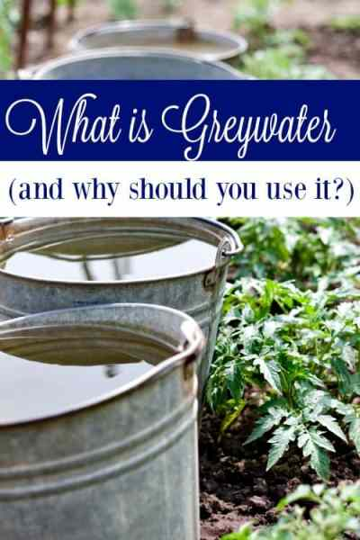 Do you know what greywater is? If not, you need to! It could be saving you hundreds each year instead of cost you money!