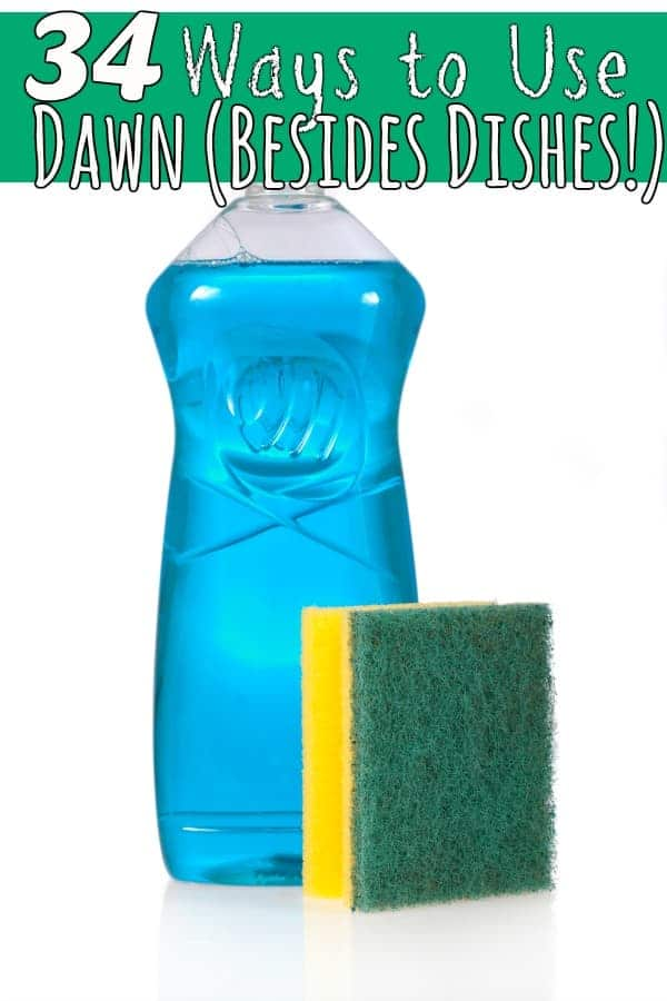 34 New ways to use Dawn - Do you have a bottle of Dawn dish soap under the sink? Grab it and let's get going! It has more uses than dishes that these 34 new uses for Dawn dish soap may just surprise you!