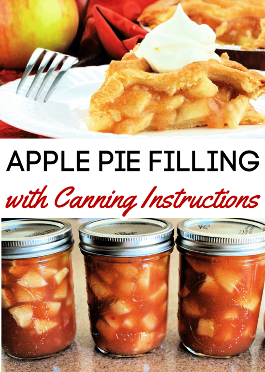 Fall is the perfect time for a great apple pie and this canned apple pie filling recipe is perfect for any apple recipe! It's easy to make, easy to preserve and tastes absolutely amazing!