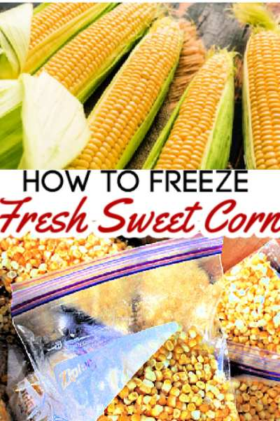 Freezing corn is both an easy and effective way to preserve fresh sweet corn for up to 12 months. When done correctly, your sweet corn will taste as fresh and flavorful as the day it was picked! If you've been wondering how to freeze sweet corn, I'll show you how to build your food storage by learning freeze corn in just a few simple steps!