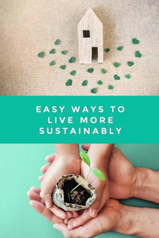 Did you know that living sustainably can be frugal? It can! These easy ways to live sustainably are not only great for the environment and reducing waste, but they will also help you save more money than you ever expected!