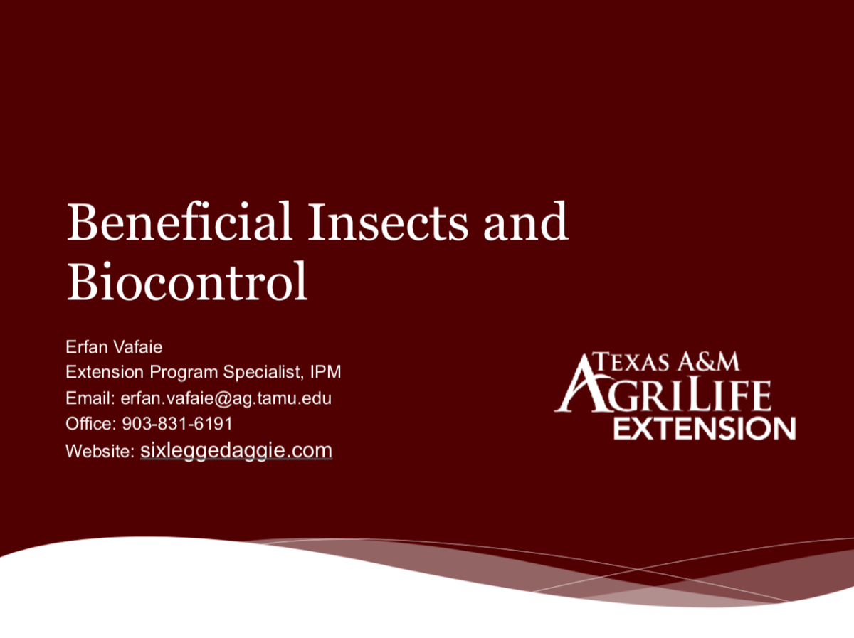 Beneficial Insects and BioControl Presentation