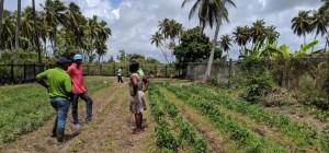Guyana Farm Visits - Day 1