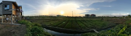 Small acreage fruit and vegetable farm