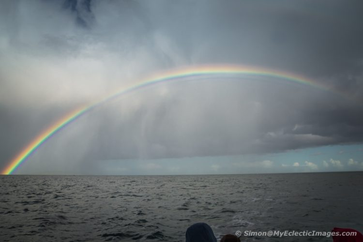 There Must be a Pot of Gold at the End of this Irish Rainbow (©simon@myeclecticimages.com)