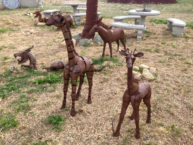 Small Giraffes