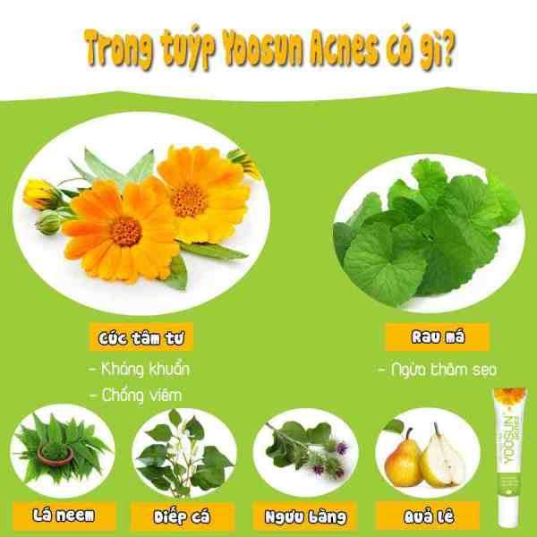 Yoosun Acnes Cream