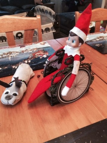 elf wheelchair
