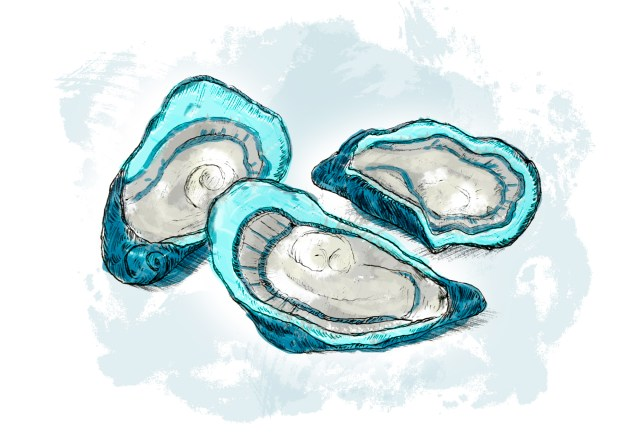 jammer_oyster_pairing