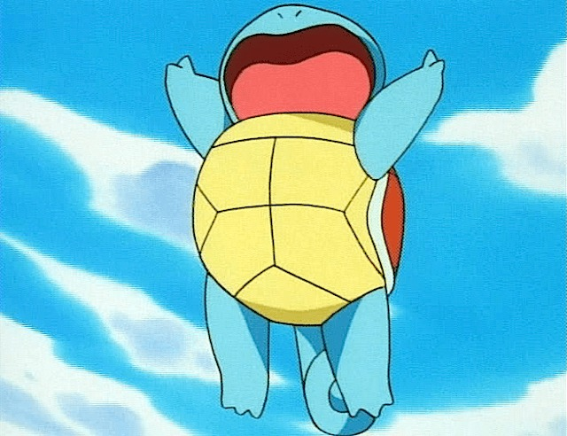 squirtle karate