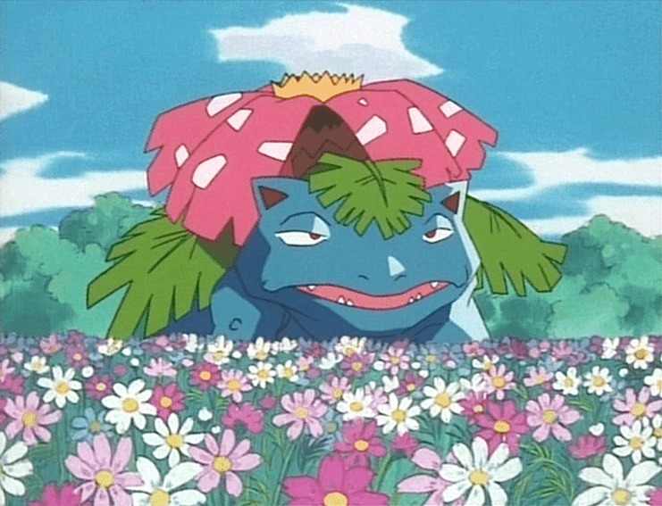 venusaur sleepy faded flowers