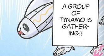 group of tynamo