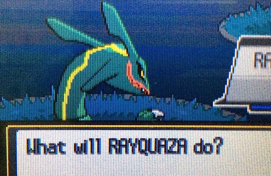 what will rayquaza do