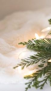 Green & White Christmas