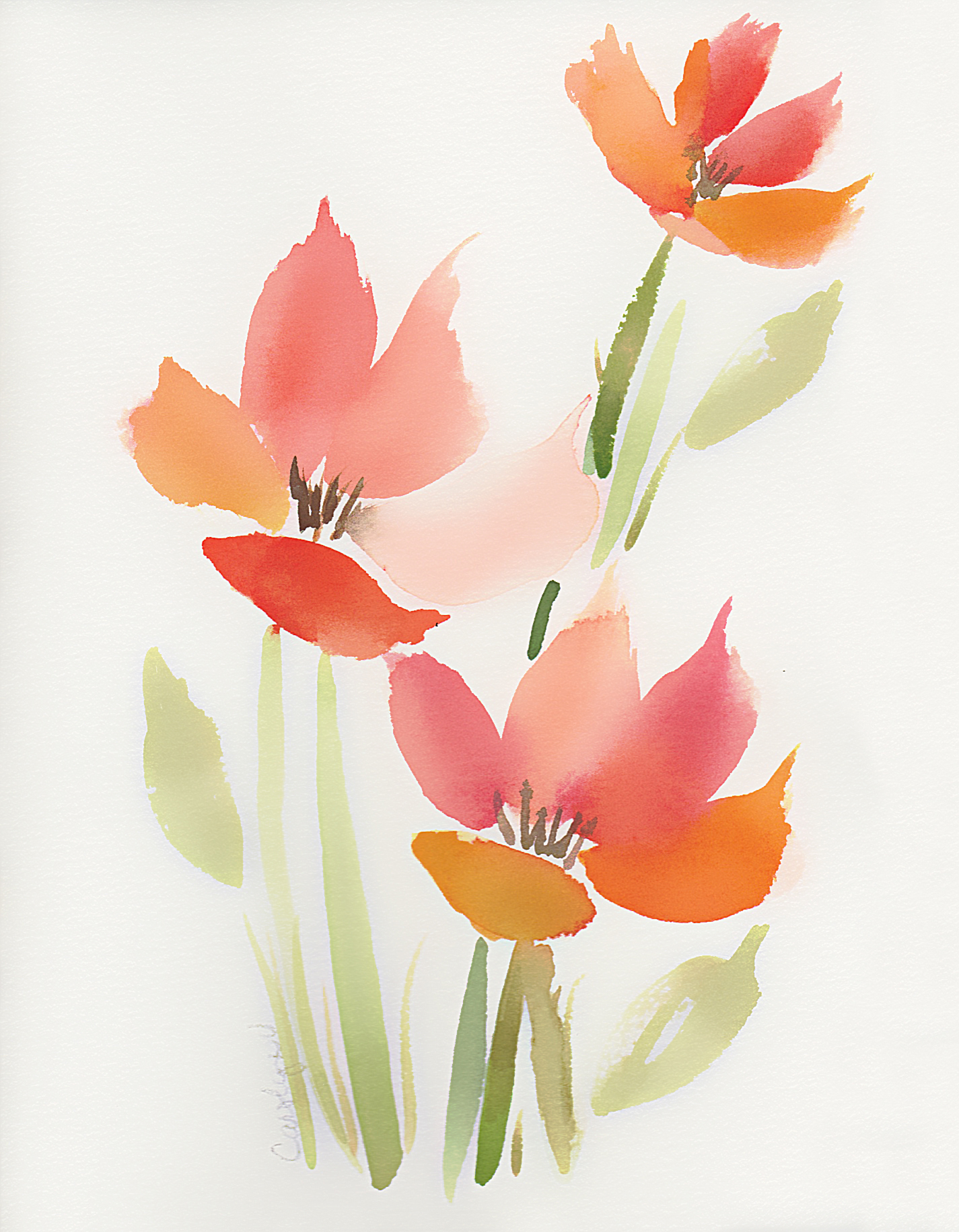 Orange Floral Watercolor