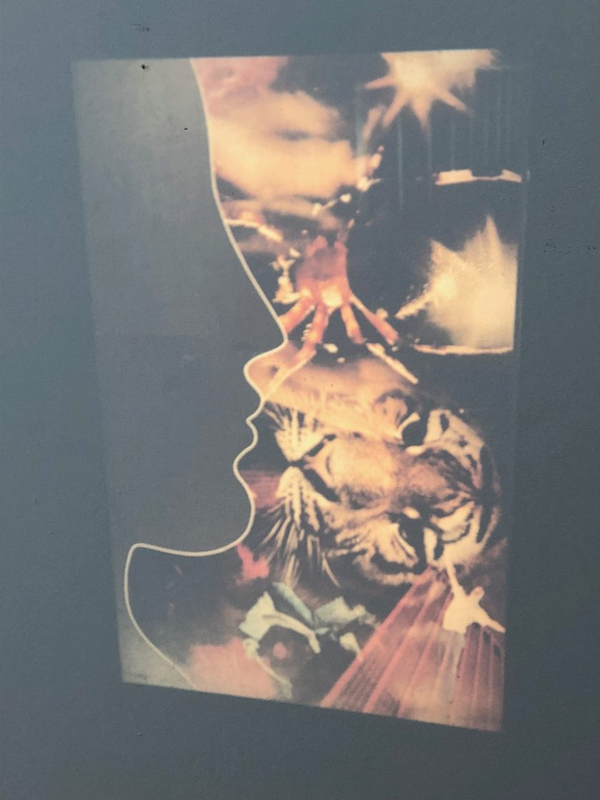"""Valeerat Burapavong. """"Untitled,"""" 1973. A silhouetted profile superimposed over a collage of images associated with Thailand, including a tiger's face and a Thai dancer. Courtesy of Illinois Institute of Technology, Paul Galvin Library, Special Collections . Chicago, IL."""