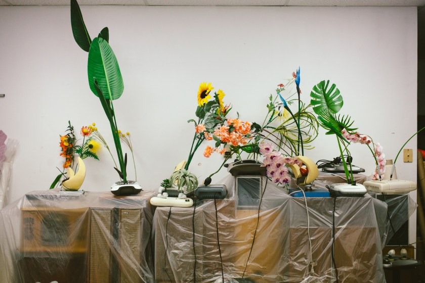 Rachel Youn, Untitled, 2020. Massagers, artificial plants, and speaker cabinets. Photo by Krista Valdez.
