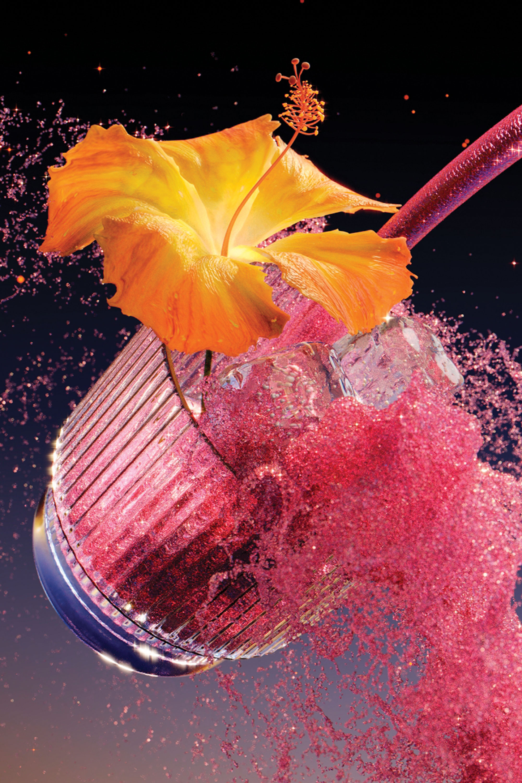 sixtysix roanne adams roand co kin euphorics flower branding