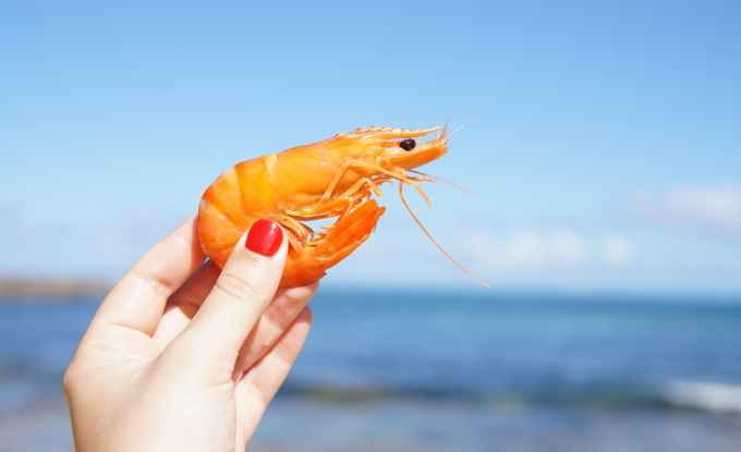 Food imports banned in China after Shrimp tested positive for corona virus – Latest update