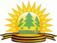 Стартовал проект «Лес Победы», посвящённый 70-летию Победы в Великой Отечественной войне