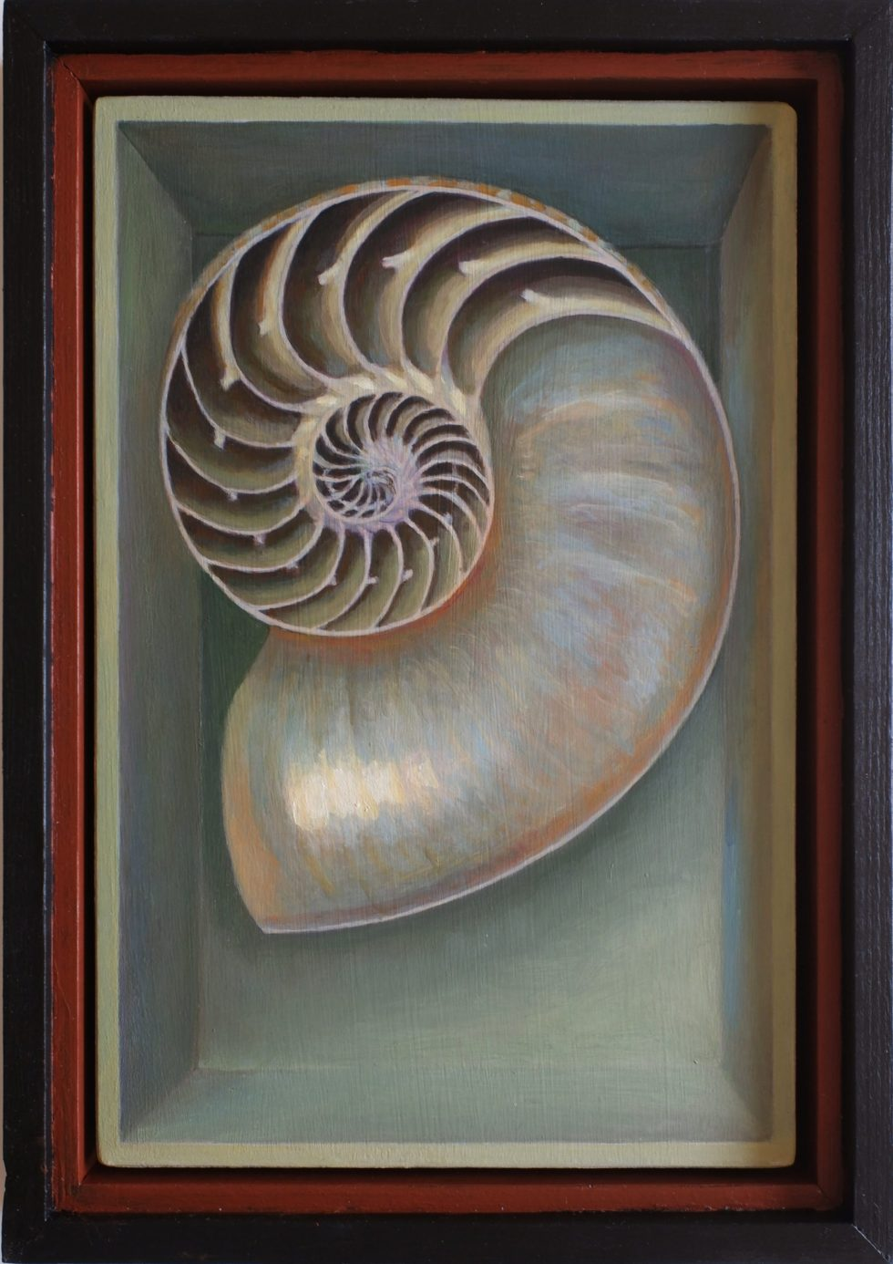 shell spiral still life painting