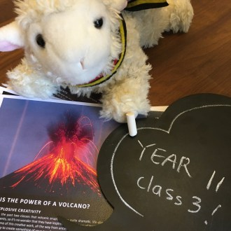 Photo of Agnes the Access Lamb with a printout of Class 3 of the Year 11 Inspire course.