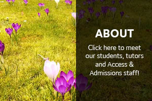 About Inspire Digital: Click here to meet our students, tutors and Access & Admissions staff!