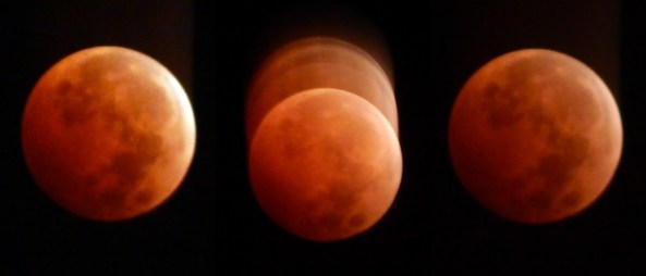 Blood Moon Over San Diego
