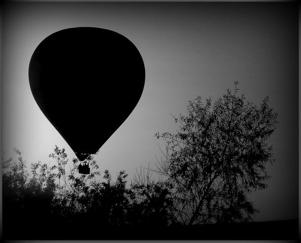 Hot Air Balloon Landing at Dusk in Carmel Valley, San Diego; Photo by Susan Farese, SJF Communications, 2014