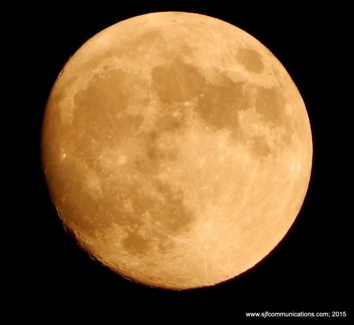 kate9.moon