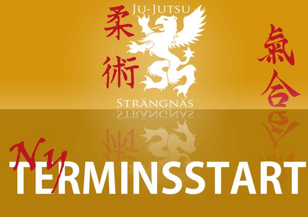 terminstart2