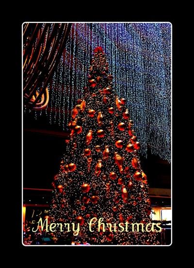MerryChristmas2008.jpg