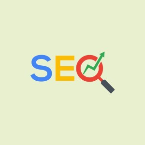 Single business seo