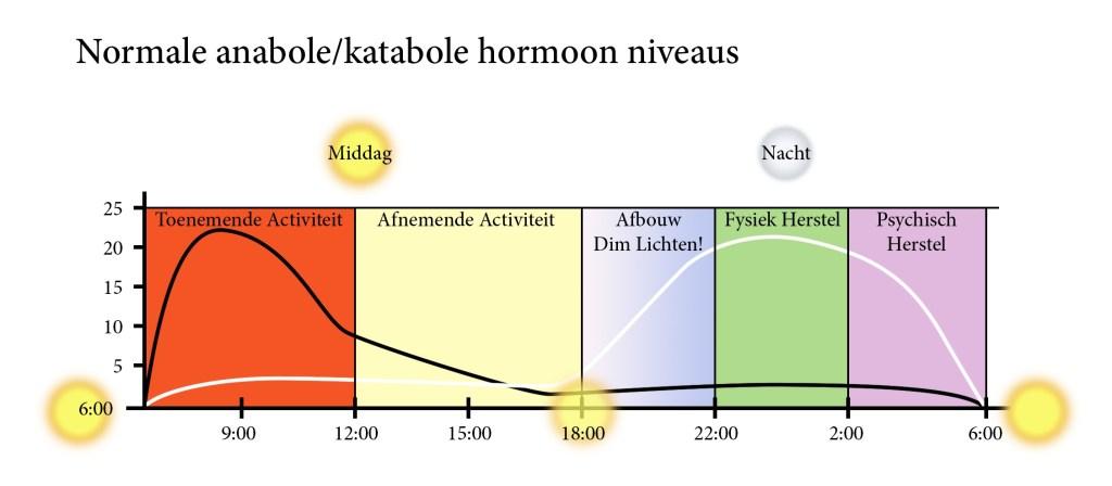 Slaap en hormonen