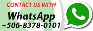 Contact Us Whatsapp