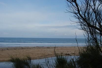 Back beach at Apollo Bay