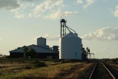Silos near Moama NSW