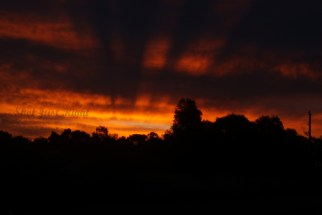 Sunset in Echuca