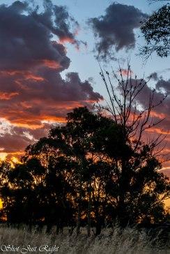 Sunset tonight 14th Dec.