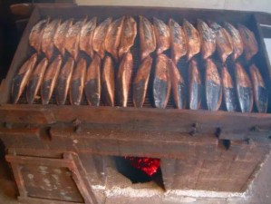 手火山式鰹節って何?鉄腕DASHで城島さんが紹介した鰹節が気になる!