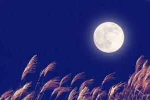 中秋の名月2018年はいつ、由来は?その日に満月は見れるの?
