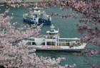広島の桜・花見の名所や穴場おすすめ10選と開花情報2018!