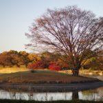秋分の日 祝日