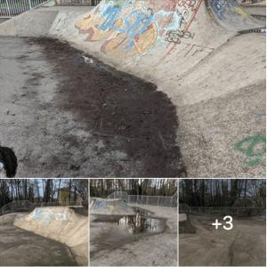 Un coup de propre au skatepark St Pierre – Mars 2020