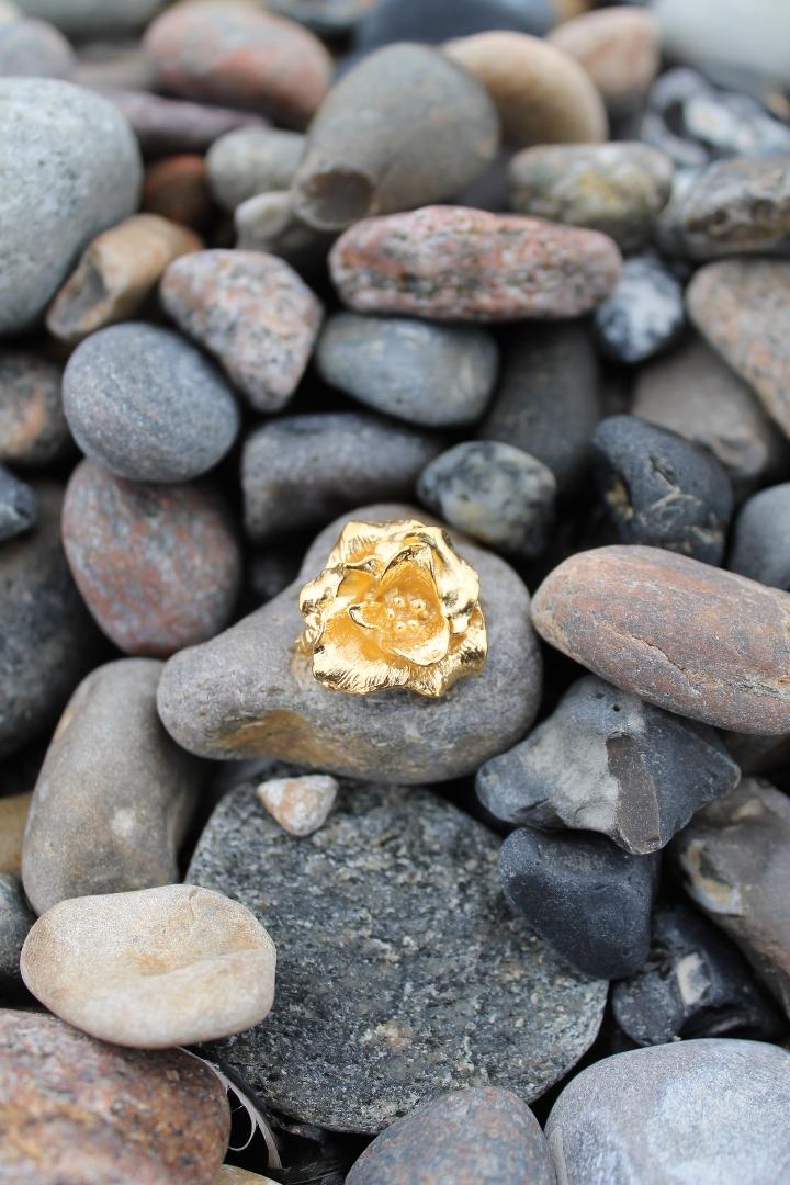 Skagenrosen i guld på sten