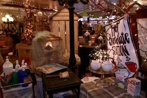 Skagit County Shelley's Shack Parakeets