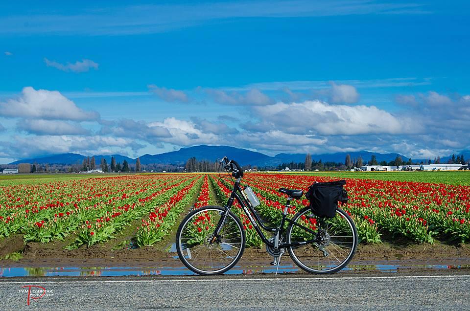 Skagit County Free Kids Activities Biking