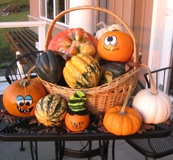 Baby Bay Produce Decorative Pumpkins